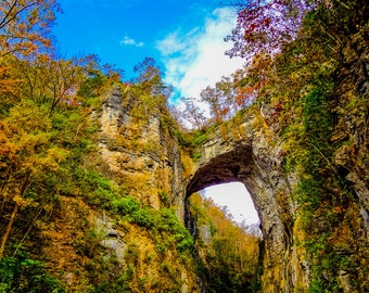 Natural Bridge Virginia Fine Art Print - Nature, Botanical, Fall, Trees, Woods, Nursery Decor, Home Decor, Zen, Gift