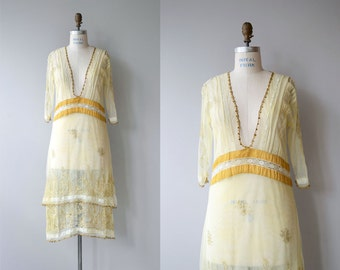 Lucid Memory dress   vintage 1920s dress   net lace embroidered 20s dress