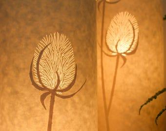 Small teasel table lamp
