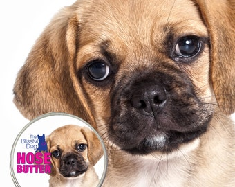 PUGGLE Original NOSE BUTTER® Handcrafted All Natural Balm Soothes & Conditions Dry or Crusty Dog Noses 1 oz. Tin with Puggle on Label