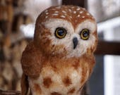 RESERVED - Saw Whet Owl Needle felted Bird Animal Needle Felted Soft Sculpture by Bella McBride