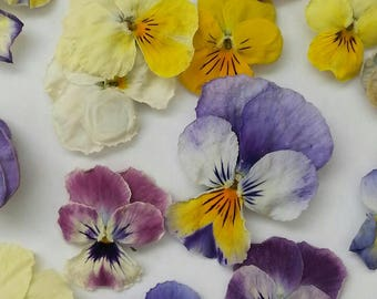 Dry Violas, Dry Flowers, Real, Wedding Confetti, Decoration, Table Decoration, Centerpiece, Real Flowers, Viola, Craft Supplies, 100 Violas