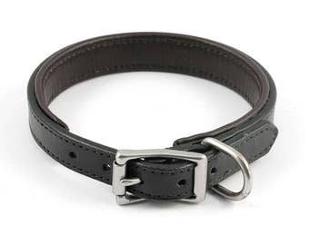 Padded Leather Dog Collar - size M