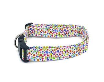 Rainbow Colored Sprinkle Dots on White Frosting Dog Collar