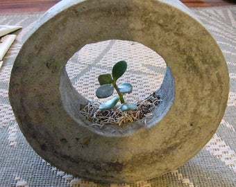 "Round Cement Planter, Ring Shaped with Jade Plant. 8-1/4"" diameter w/ 4-1/4"" hole. Modern Contemporary Sculptural Planter."