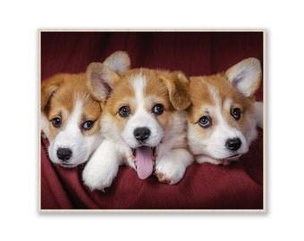 "10"" x 8""Dogs Photo on Wood, Custom Photo Print- Photo on Birch Wood, Image on Plywood, Custom Wood Prints, Custom Photo Prints W032"