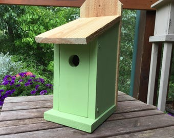 Bluebird Birdhouse Solid Wood Green