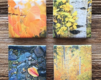 Fall Theme Refrigerator Magnets, Set of 4, 2x2 Ceramic Tiles, Ceramic Tile Magnets, Autumn Scenes, Fall Colors, Photo Tiles, Kitchen Decor
