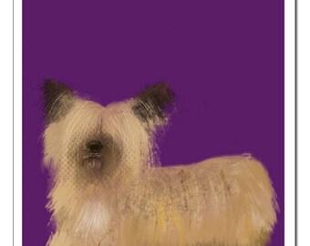 Skye Terrier Dog Illustration-Pop Art Print