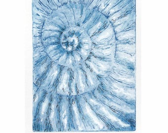 Original ammonite fossil zinc etching no.85 with mixed media jurassic Dorset coast fossil spiral fossil ammonites golden section