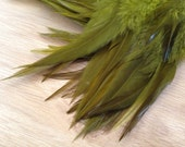 Olive Rooster Hackle - earthy olive tone natural dark green