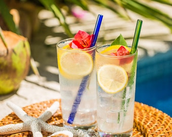 Hummingbird Glass Straws Baja Beach 6-pack With Cleaning Brush - Perfect for Smoothies, Hot Tea, Water, Essential Oils