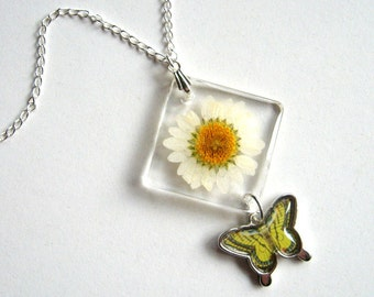 White Daisy and Butterfly - Real Flower Garden Necklace -  botanical jewelry, flower jewelry, daisy necklace, natural, resin jewelry, ooak