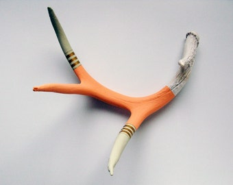 Painted Antler - LARGE - Peach, Eggshell & Gold Striped
