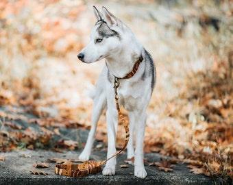 BOHO woven Dog Leash - mustard, brown- Antique Brass