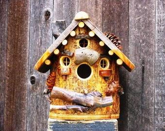 Rustic Western Spruce Bird House #6