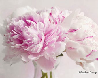 Peonies Photography, Flower Photography, Garden Photography, Still Life, Pink Peony, White Peony, Spring Flowers, Botanical Photography