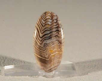 Ring Cabochon Hells Canyon Herringbone Petrified Wood. Handcrafted USA. Natural Gemstone.