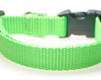 "Lime Green 3/4"" Width Adjustable Collar"