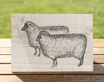 Farmhouse Greeting Card | Sheep Chic | A7 5x7 Folded - Blank Inside - Wholesale Available