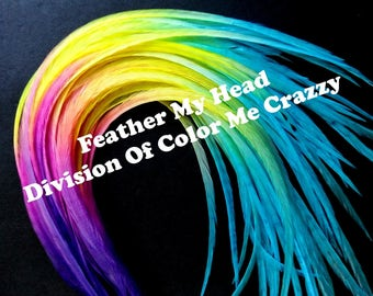"""Feather Hair Extensions - Multi Color Long 9""""-12"""" (23-30cm) - 5 Pc - Pink Purple Yellow Blue"""