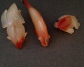 RESERVED              Hand carved carnelian fish