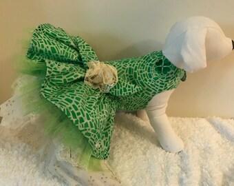 Beautiful lace and shamrock green dog dress size small