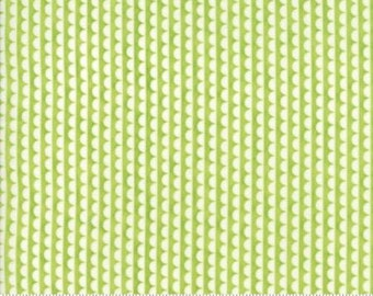 Ruby Scallop Green Basics by Bonnie and Camille from Moda -1 yard
