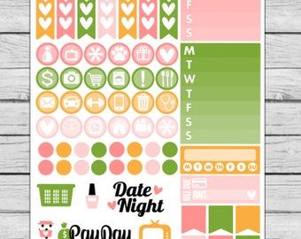Bella Rose Functional Planner Stickers