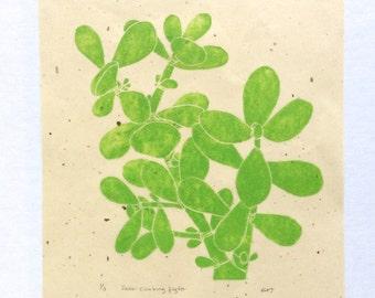 linocut - JADE - 8x10 / printmaking / block print / green / houseplant