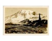 Mt Rainier From Paradise Valley WA - Vintage Postcard by Ellis - Washington State Collectible