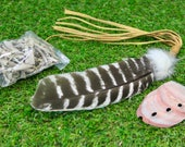 Smudge Feather Kit including Bronze Turkey Feather-Small Abalone Shell-White Sage
