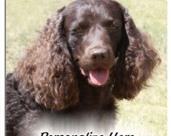 American Water Spaniel  (((( PERSONALIZED )))))  mouse pad