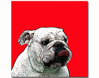 Custom Pet, Pet portrait, pet portrait gift, customizable gifts, pet memorial, custom illustration, custom pet portrait