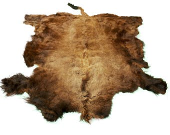Glacier Wear Select Buffalo Bison Robe Hide Rug #0013