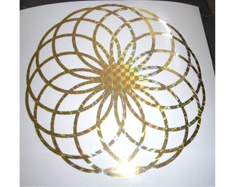 Holographic Vinyl FX Torus Field Decal