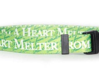 Heart Melter Standard Collar