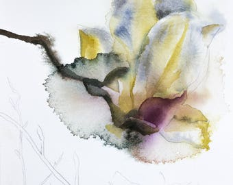 magnolia study no. 2 . original watercolor painting