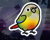 """Chubby Pineapple Green Cheek Conure 3.5"""" Sticker [Outdoor Quality] 1-3pc Package Options"""