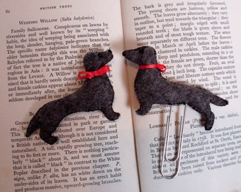 """Shop """"dachshund stocking"""" in Office"""