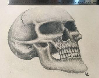 Skull pencil drawing (original)