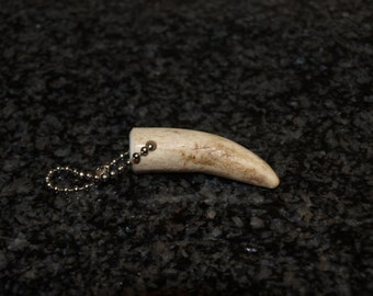 Antler Key Chain, Whitetail Deer Antler Key Chain