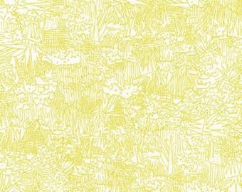 Green Wall Lawn in Wasabi- Friedlander Lawn by Carolyn Friedlander for Robert Kaufman