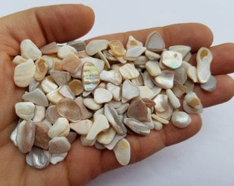 Small Freshwater Shell Pieces, Tiny white Sea Shell pieces, Small Shell chips, Tiny Shell chips