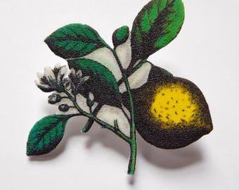 Flowering Florentine Citron Branch Brooch