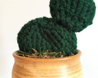 Don't be so Prickly | Crocheted Succulent / Cactus