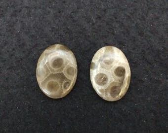 Vintage Petosky Stone 25x18 Oval Cabochons