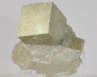 Pyrite or Fools Gold Crystals on Matrix from Spain