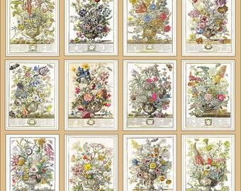 Winterthurs 12 months of flowers Robert Furber whole year vintage botanical art print wedding anniversary newborn baby gift idea 7.5 x 10 in