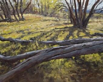 Landscape 9x12 Oil Painting